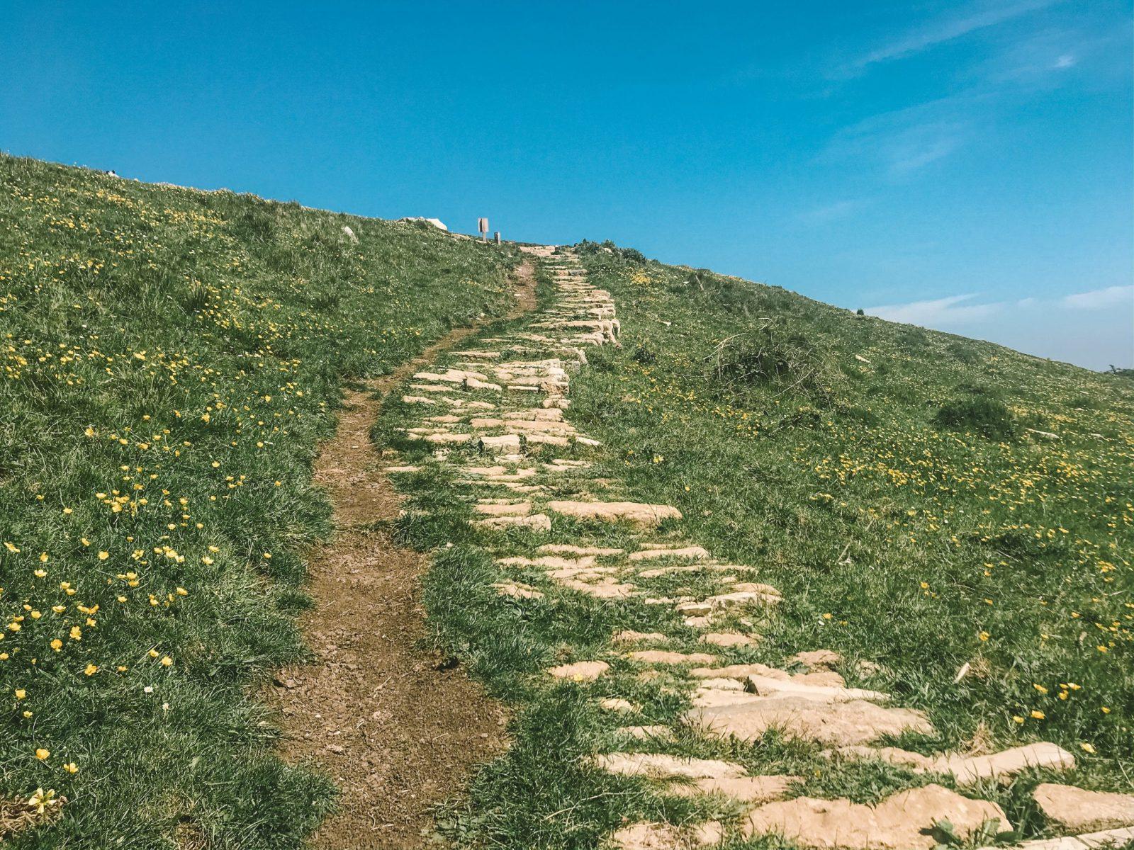 Jurassic Coast circular walks Swanage